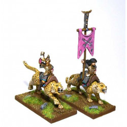 Amazons Cat Riders Command