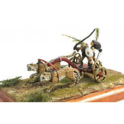 Amazon Attack Chariot