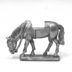 Light horse, grazing