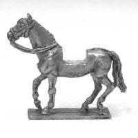 Heavy horse, walking