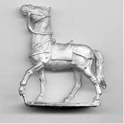 Horse for Celts and Romans, walking