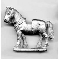 Heavy horse for medieval knight, uncovered, standing