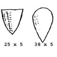 Shields 012